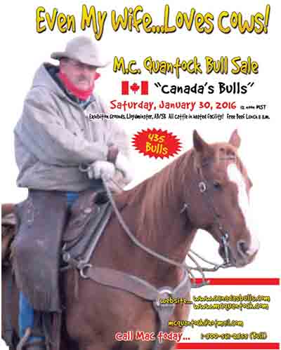 2016 MC Quantock Canadas Bulls Bull Sale Mac Creech Catalogue Cover Lloydminster Alberta Saskatchewan