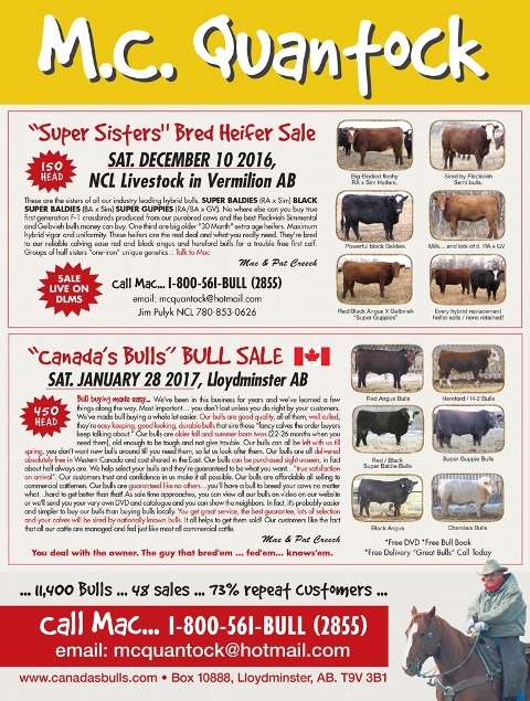 Canadian Cattleman November 2016