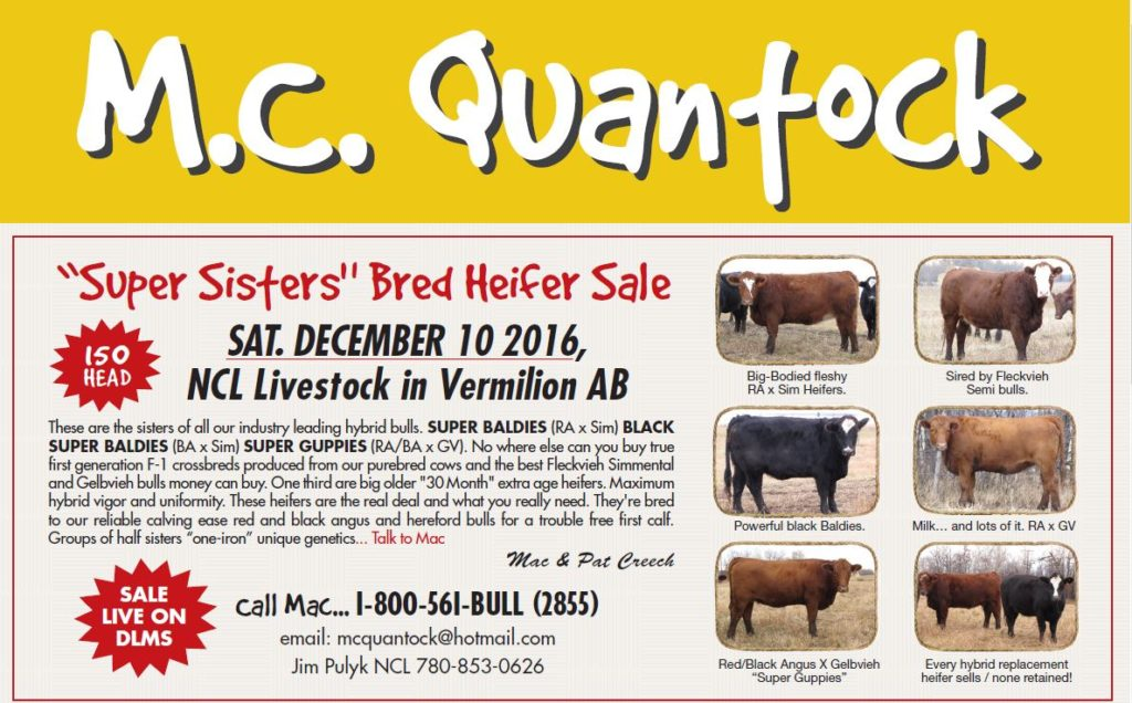 Cattleman Magazine Bred Heifer Sale